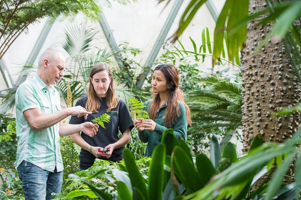 Professor with students inside the greenhouse