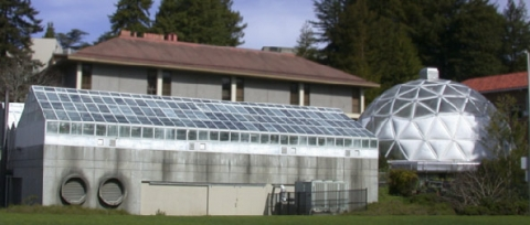 Greenhouse buildings