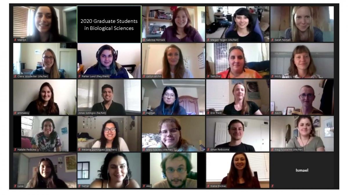 Fall 2020 Grad Students